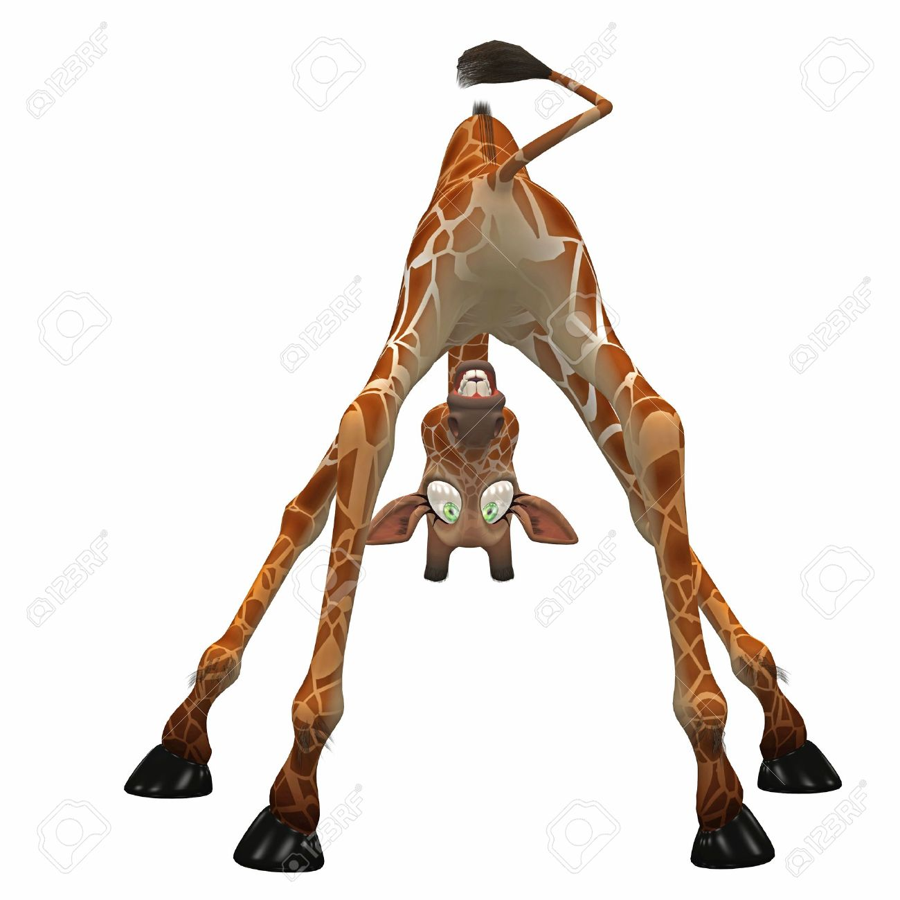 giraffe bent over looking through it's legs